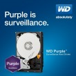 WD Purple 1 110x110 - Western Digital Launches WD Purple 3.5 inch 4TB Hard Drive