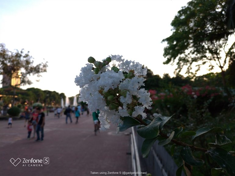 P 20180417 173113 770x578 - Huawei P20 Lite vs ASUS Zenfone 5? Who's better in Photo Auto Mode?